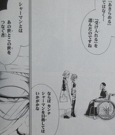 シャーマンキング&a garden 1巻 感想 ネタバレ 24