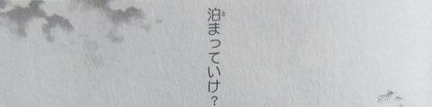 シャーマンキング ザ・スーパースター 5巻 感想 37