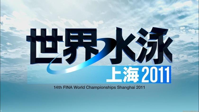 2011世界水泳 シンクロデュエットフリー決勝 ロシア「23枚」