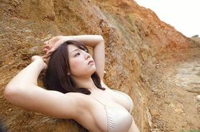 com_s_sinozakiai442