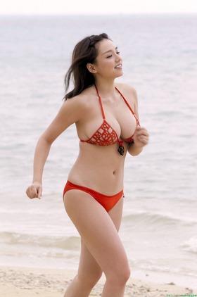 com_s_sinozakiai486