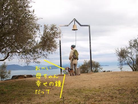 c6033b31.jpg