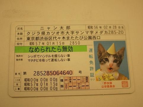 f96f3e1a.jpg