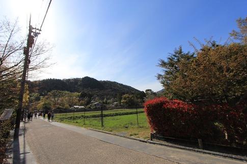 190414TW3嵐山さがの楓カフェ前