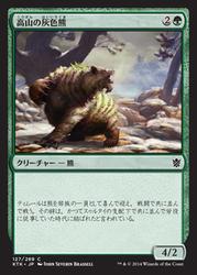 ktk_高山の灰色熊
