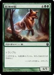 ths_巨体の狐