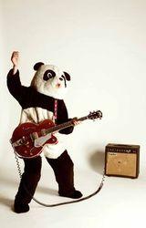 guitarpanda