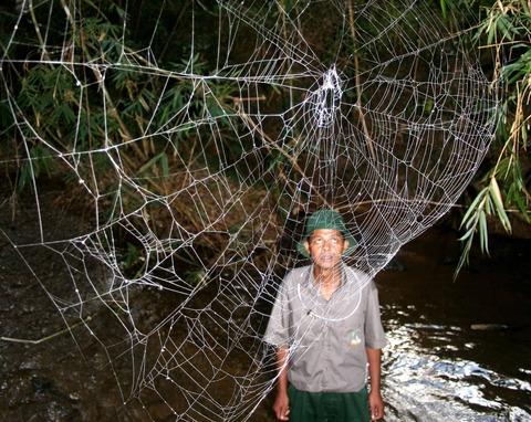 manweb
