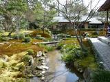 庭がのどかな湯豆腐のお店にて(3月1日)