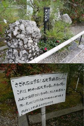 9-9さざれ石