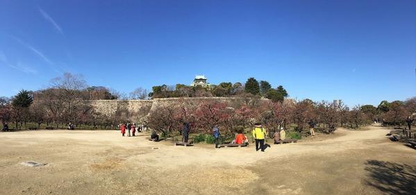 大阪城公園梅林パノラマ