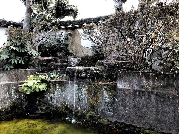 20160111-池