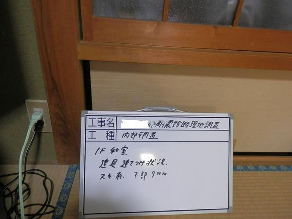 20160304-調査3