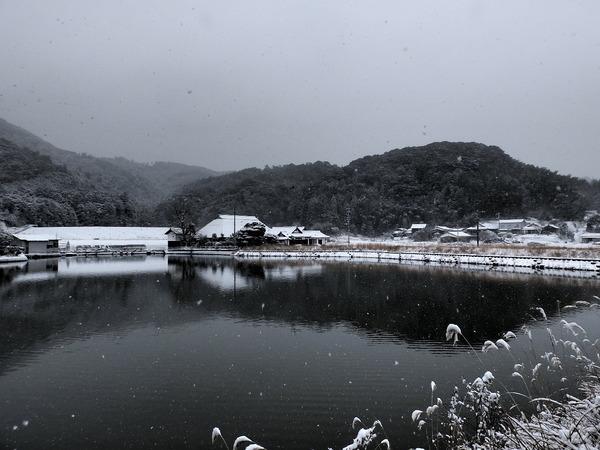 20160124-雪景色