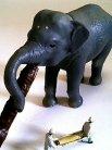 ゾウも美味そうに食ってます。