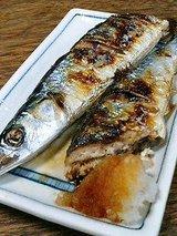 明治屋 秋刀魚