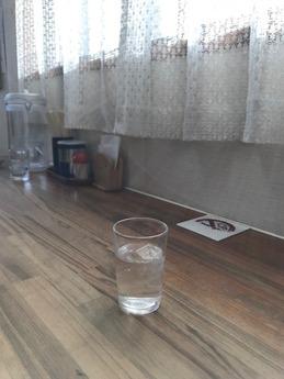 紫川ラーメン (2)