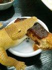 ワニは味噌カツが好きなようです。