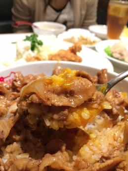 紅宝石 肉飯 (1)