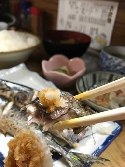 うな達さんま (4)