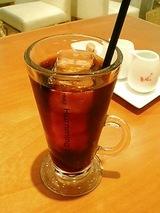 ハミングバード2008 水出しアイスコーヒー