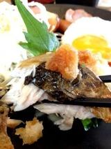 ジョイフル八代 幕の内定食 499円