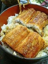 鰻丼(松)1400円