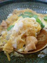 錦 かしわ丼(670円)
