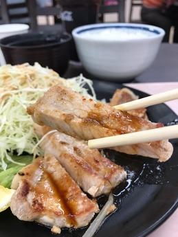 一心豚 (2)