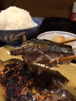 魚正宗 (4)