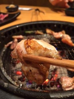 鳥奉行富田林 (6)