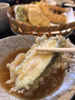 天晴花田 (5)