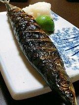 みちのく 秋刀魚