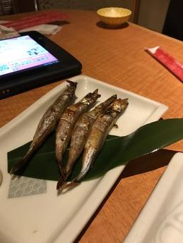 魚民名谷 (9)