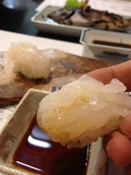 かわぐち 白海老寿司