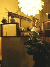 cafe plus 店内1