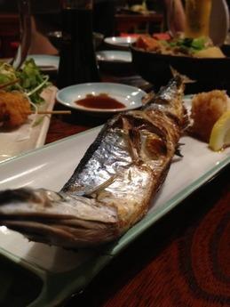 よさこい 秋刀魚