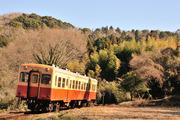小湊鉄道キハ200形 キハ208形