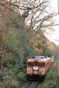 キハ28-2346形+キハ52-125形(いすみ鉄道 譲渡車)