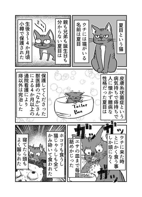 130-夏目について_001