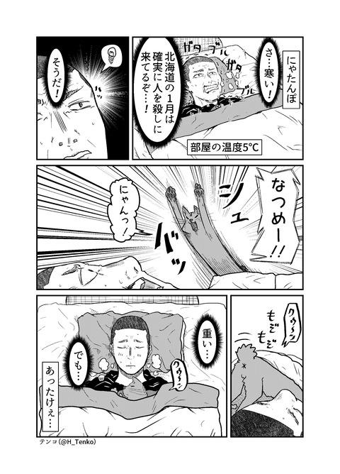 141-にゃたんぽ_001