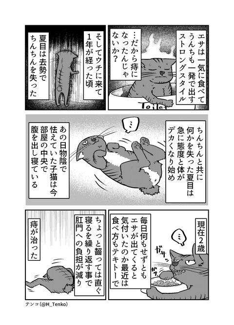 130-夏目について_002
