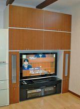NGN邸TV1