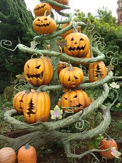 ぐるぐるかぼちゃ