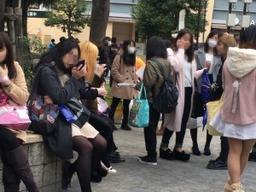 yasei1-300x225