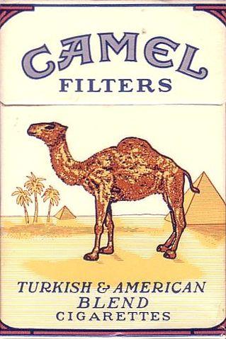 Camel_filtersbox_rjr