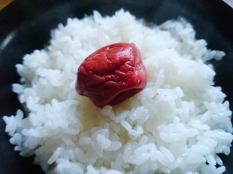 梅干しご飯