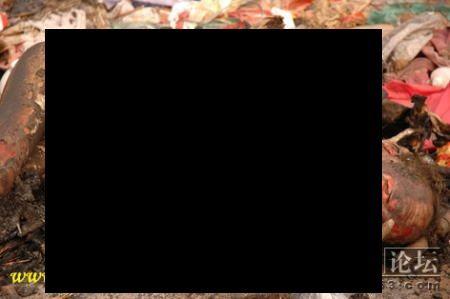 80430d.jpg黒