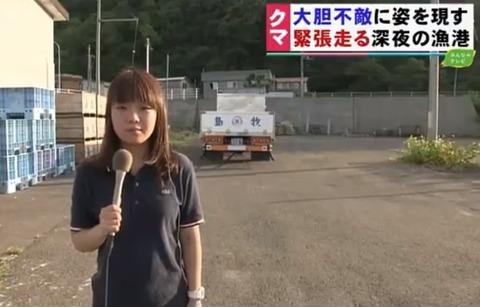 田中うた乃記者ヒグマ島牧村追加取材