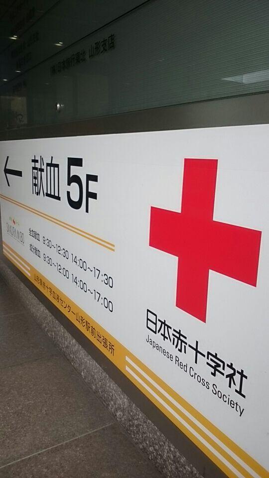 今日は献血